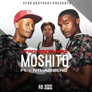 Afro Brotherz - Moshito (feat. Nthabiseng) - latest house music, deep house tracks, house music download, club music, afro house music, afro deep house, afro house songs 2018, best house music, african house music, afro tech, afro house datafilehost, latest sa house music