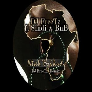 DJ Freetz feat. Sindi & BNB - Ntab' Ezikude (DJ FreeTz Remix), new south africa house music, sa afro house 2018