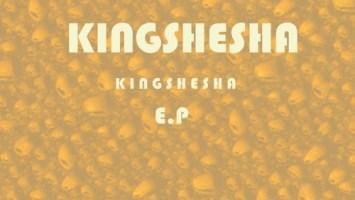Dj Pelco & Kingshesha feat. Terrorist - Singenile Nge Gqom