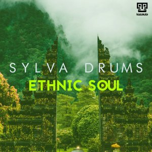 Sylva Drums - My Groove (Kazukuta Mix)