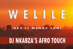 Ray, Wendy Soni - Welile (Dj Nkabza Afro Touch), afro tech house, tech house, afro tecno house music, afro house 2019 download, south african house music