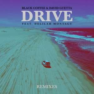Black Coffee & David Guetta - Drive (feat. Delilah Montagu) [Remixes] - deep house 2018, new deep house music, download deep house sounds