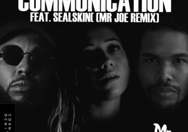 Mr. Blasé feat. Sealskin - Communication (Mr Joe Remix)