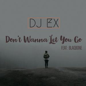 DJ EX - Don't Wanna Let You Go (feat. Blaqbone), mzansi house music downloads, south african deep house, latest south african house, new sa house music, funky house