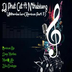 DJ Phat Cat feat. Nthabiseng - Ulithemba lam (Zola Emoboys Drum n Bass Drag Remix)