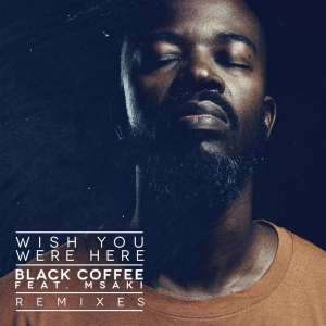 Black Coffee feat. Msaki - Wish You Were Here (Remixes), latest house music, house music 2019 download mp3, download new afro house music, south african house music