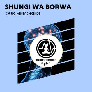 Shungi Wa Borwa - Our Memories (Original Mix)