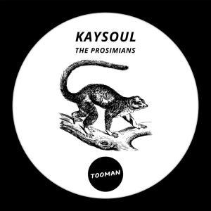KaySoul - The Prosimians (Dark Art Dub), deep house sounds, new deep house music, deephouse 2019, latest south african deep house music