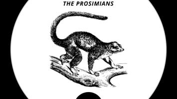 KaySoul - The Prosimians EP, deep house sounds, new deep house music, deephouse 2019, latest south african deep house music