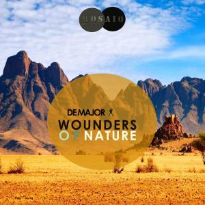 De Major - Zulu Ritual (Original Mix), south african house music, new house music, afrohouse, afro house 2019, free mp3 music download, latest afro house music