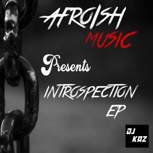 Dj Kaz - Introspection EP