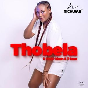 Nichume - Thobela (feat. Mobi Dixon & T-Love), new south africa house music, afro house music, afrohouse songs, sa music