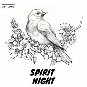 VA - Spirit Night