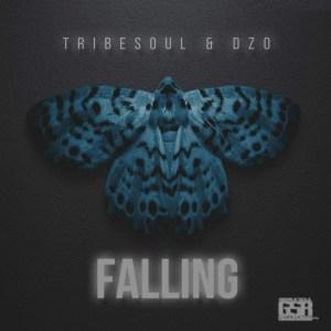 Tribesoul & Dzo - Falling (Original Mix)