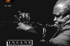 Insane Malwela - Tribute to Hugh Masekela (Broken Hearth Mix)