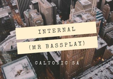 Caltonic SA - Internal (Mr Bassplay), new amapiano music, amapiano songs, latest sa amapiano, amapiano 2019 download