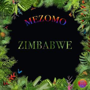 Mezomo - Zimbabwe, deep tech house, afro tech, new house music download