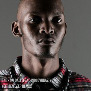 TNS Ft. Indlovukazi - My Dali (Citizen Deep Remix), new house music, new south african music, afro house songs, afro house 2019 download, mp3 download, latest sa music