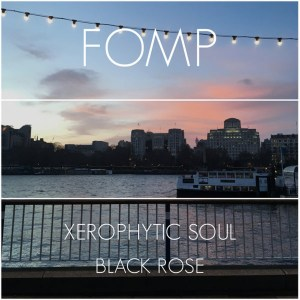 Xerophytic Soul - Black Rose (Original Mix)