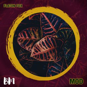 DJ Flaton Fox - MOD EP