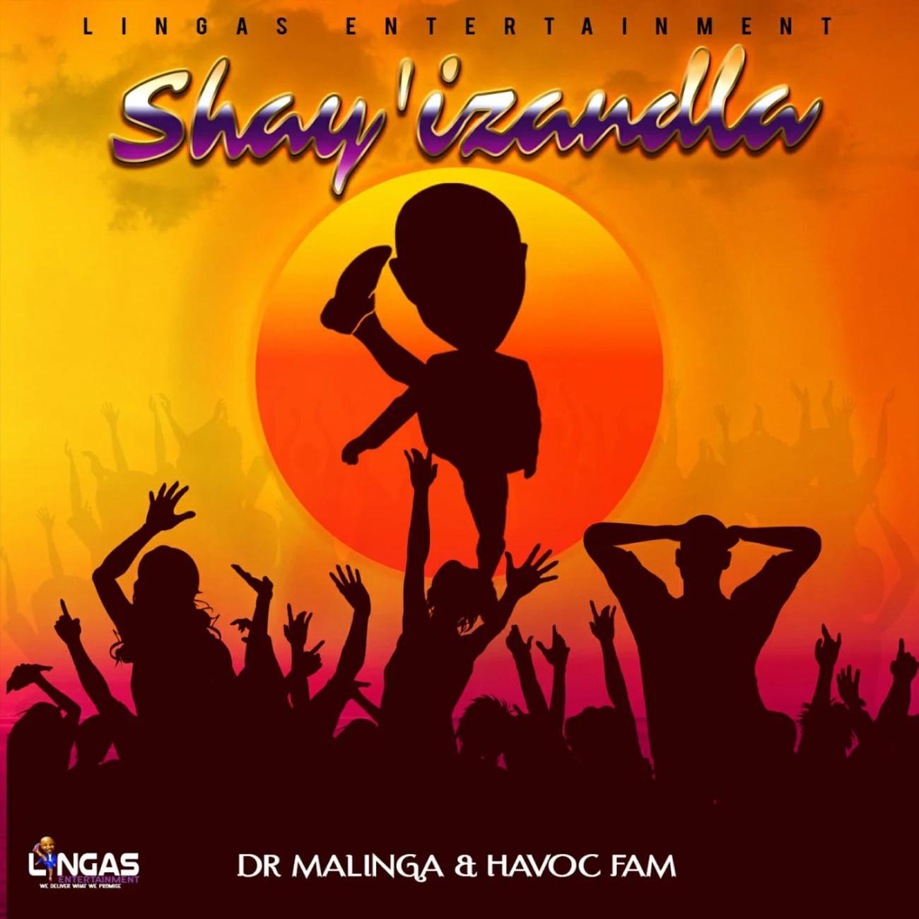 Dr Malinga Ft. Havoc Fam – Shay'izandla