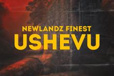 Newlandz Finest - uShevu (Broken Mix)