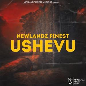 Newlandz Finest - uShevu (Broken Mix), Latest gqom music, gqom tracks, gqom music download, club music, afro house music, mp3 download gqom music, gqom music 2019, new gqom songs, south africa gqom music.