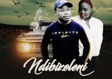 DJ TPZ - Ndibizeleni (feat. Bukeka)