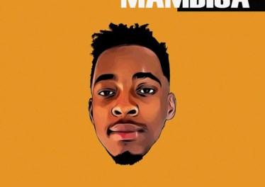 Mas Musiq - Zaka (feat. Aymos, DJ Maphorisa & Kabza De Small), new amapiano music, amapiano 2019, house music download, latest sa amapiano music, amapiano mp3 download, new south african music download