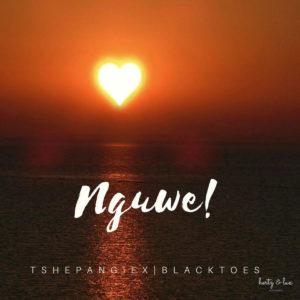 Tshepang & Black Toes SA - Nguwe (feat. Xwelking)