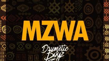 DrumeticBoyz - MZWA