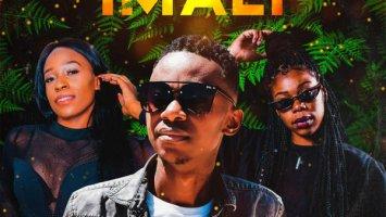 Lance Jnr - Imali (feat. Amukelani & Lilly M)
