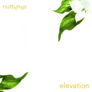 Nutty Nys - Elevation