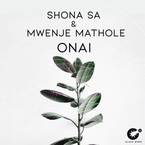 Shona SA & Mwenje Mathole - Onai (Original Mix)