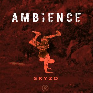 Skyzo - Ambience