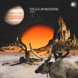 TSOS & DJ Jim Mastershine - Sekgoba (Original Mix)