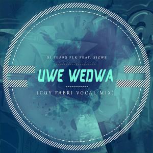 DJ Tears PLK Ft. Sizwe - Uwe Wedwa (Guy Fabri Vocal Mix)