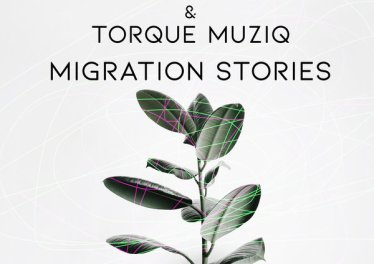 Afro Exotiq & TorQue MuziQ - Migration Stories