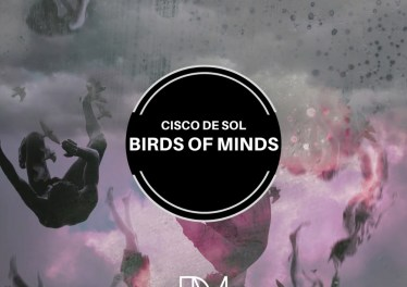 Cisco De Sol - Birds of Minds (Original Mix)