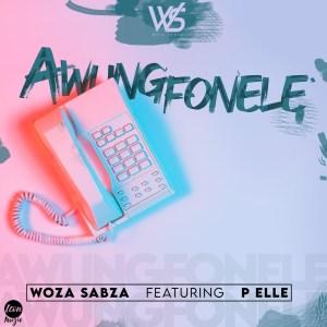 Woza Sabza - Awungfonele (feat. P Elle)