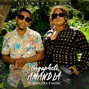 Element Boys - Ungapheli Amandla (feat. Bongeka B Music)