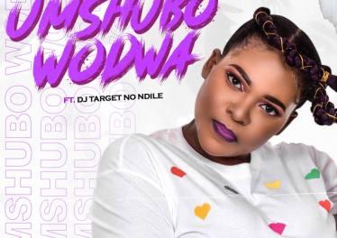 Sdudla Somdantso - Umshubo Wodwa (feat. DJ Target & Ndile)
