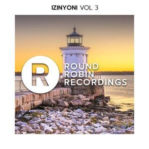 VA - Izinyoni Vol 3