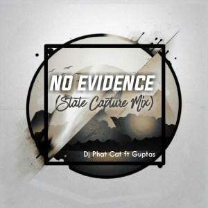 Dj Phat Cat, Guptas - No evidence (State Capture Mix)