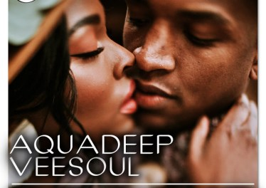 Veesoul & Aquadeep - What The Soul Needs EP