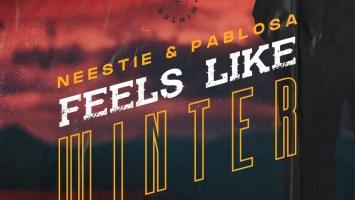 Neestie & PabloSA - Feels Like Winter (Afro Mix)