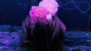 Noom, Cuebur & BokkieUlt - Purple Neon (feat. Marie Jay)