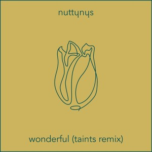 Nutty Nys - Wonderful (Taints Remix)