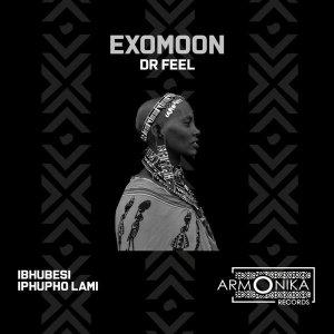 hkujyhtgrfe Dr Feel - Exomoon EP