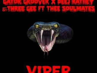 Gator Groover, Deej Ratiiey & Three Gee – Viper (Dance Mix) Ft. Thee SoulMates